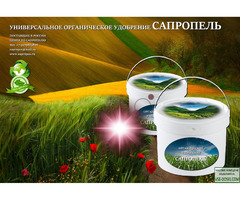 Сапропель – жидкое удобрение от производителя